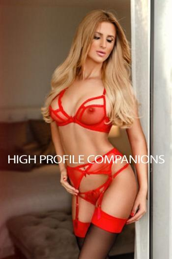 Alina from High Profile Companions