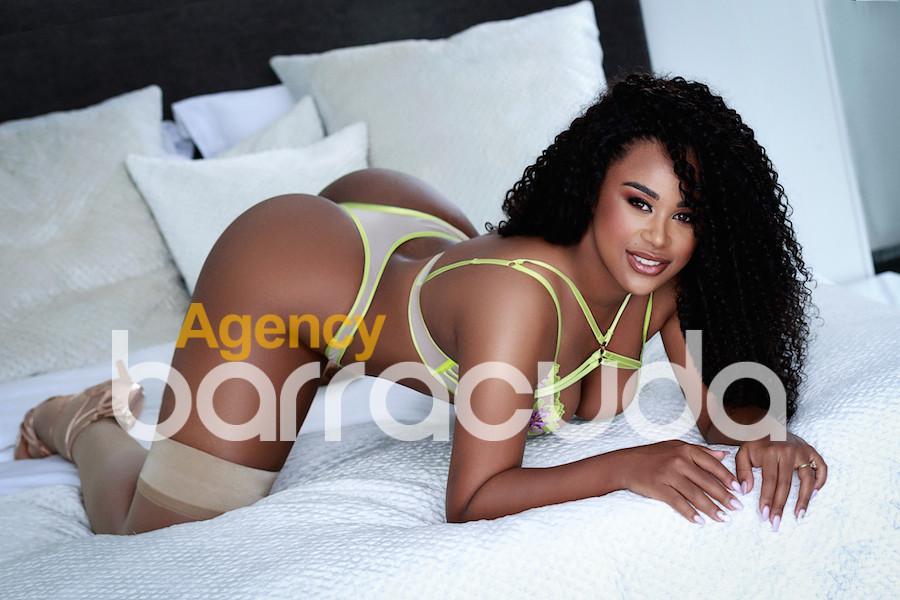Astrid from Agency Barracuda