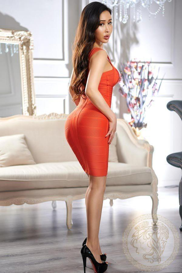 Suki from Harlingtons Escorts